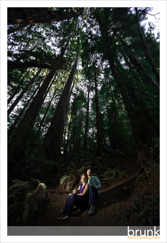 Muir_Woods_Engagement-1