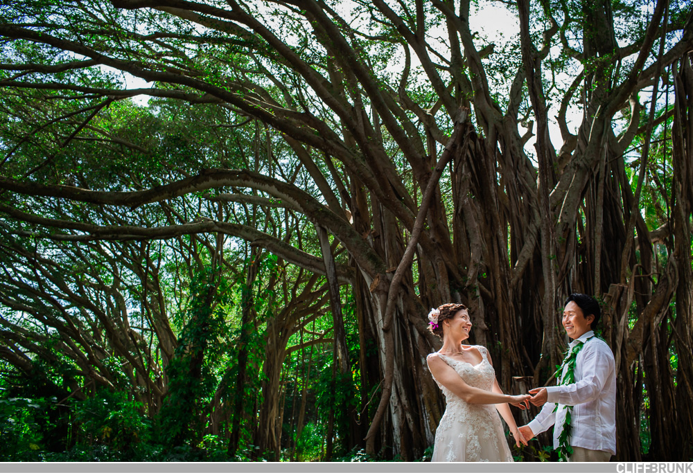 Turtle_Bay_North_Shore_Oahu_Wedding-0001