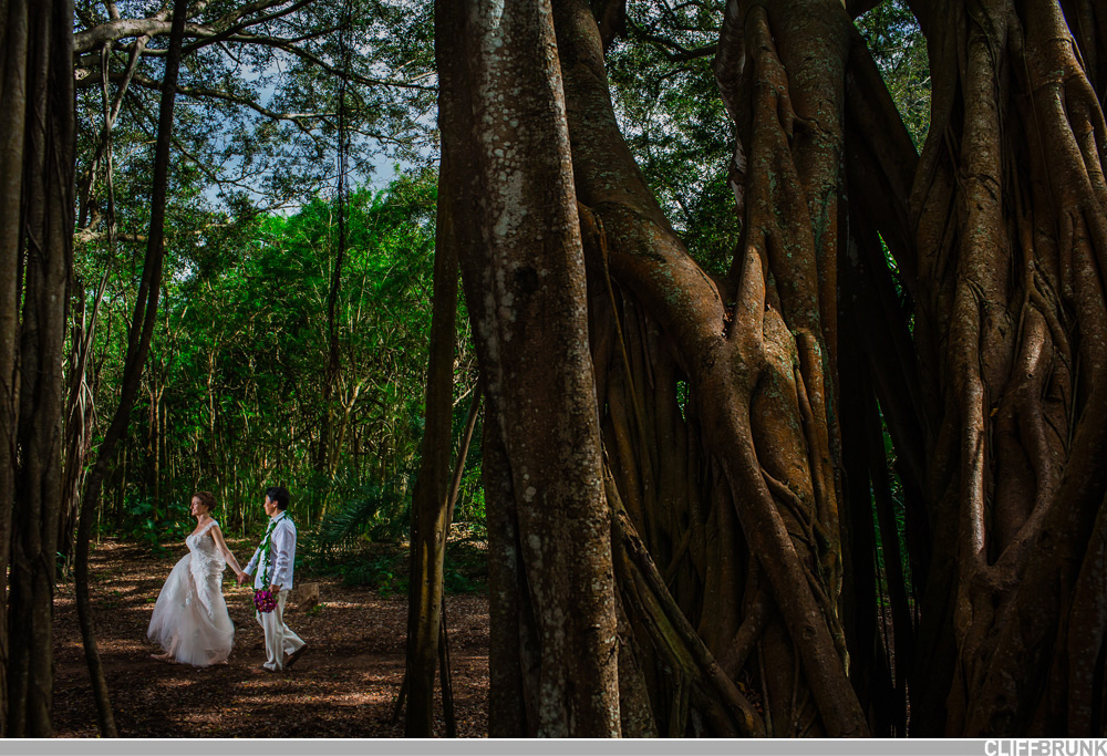 Turtle_Bay_North_Shore_Oahu_Wedding-0003