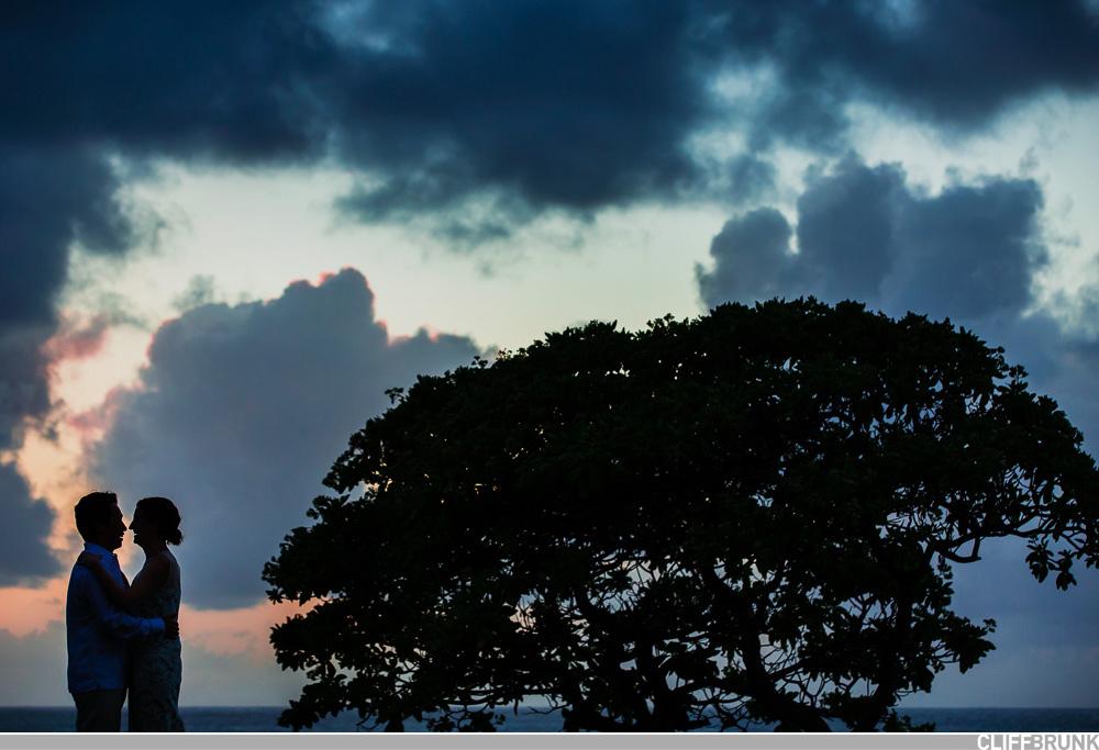 Turtle_Bay_Oahu_Wedding_Photographer-0001